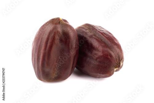 Obraz na plátně Jojoba Seed or Nut (Simmondsia Chinensis)