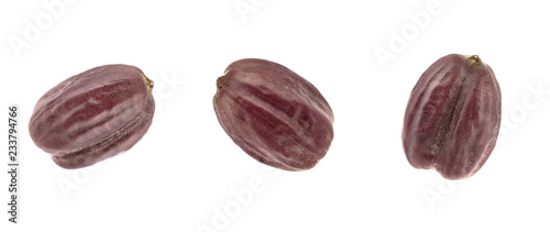 Jojoba Seed or Nut (Simmondsia Chinensis) Canvas-taulu