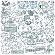 Poultry Farming Doodle Set. Do...