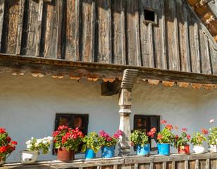 Fototapeta na wymiar Beautiful flowers outside traditional house