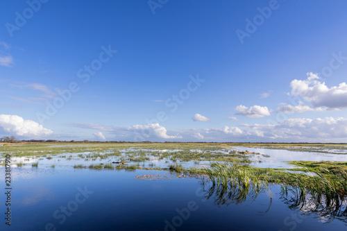 Photo Dutch polder landscape in the province of Friesland
