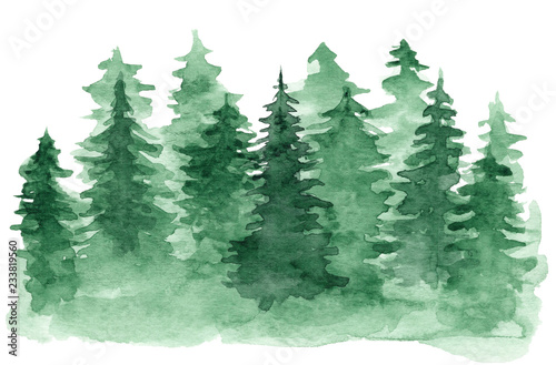 Foto auf AluDibond Olivgrun Beautiful watercolor background with green coniferous forest. Mysterious fir or pine trees illustration for winter Christmas design, isolated on white background