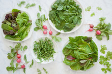Fresh Mixed Greens, Spinach, Chard And Arugula With Radishes, Cilantro And Dill.
