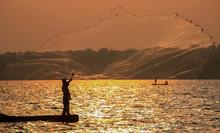 Fisherman Throws A Net In Lake Victoria. Uganda