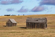 Old Abandoned Homestead Of South Dakota