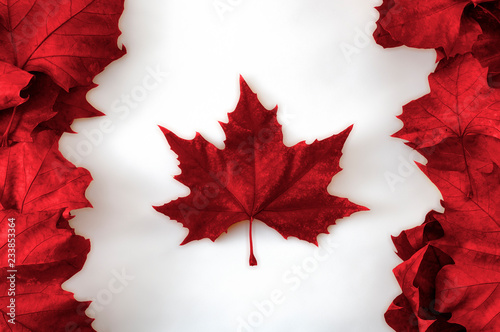 Happy Canada day concept with the canadian flag made out of real dead maple leav Fototapeta