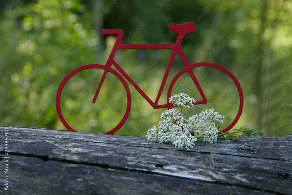 Fototapeta Red layout of the bike on the background of the forest. Background, texture, cropped shot, horizontal, abstraction, bokeh. The concept of sports and recreation.