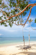 Beautiful tropical delightful extraordinary bright paradise landscape, swings by the sea