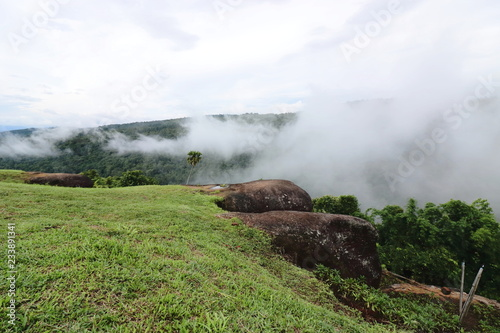 Foto  Tropical green mountain with heavy fog in rainy day