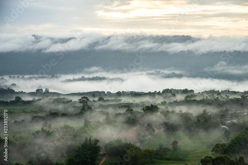 zielone-pole-drzewo-z-blekitne-niebo-mgla-i-chmury-rano
