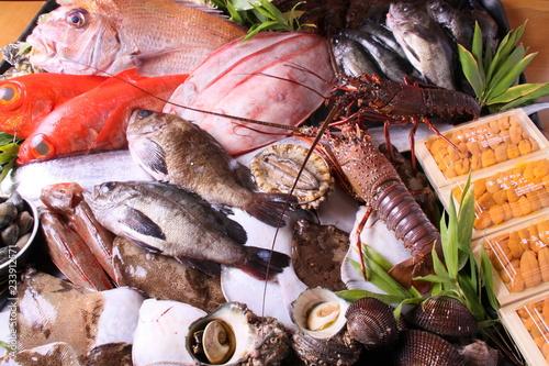 Cuadros en Lienzo  海鮮食材