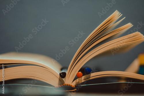 Fotografie, Obraz  Libro abierto con bolígrafos en el