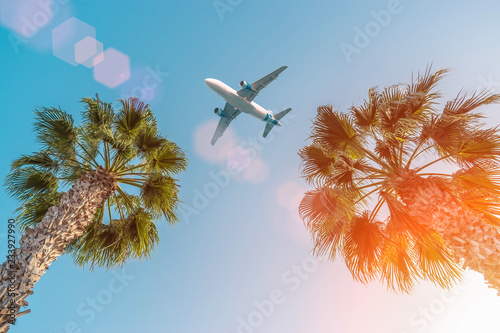 Cadres-photo bureau Avion à Moteur Passenger airplane flying above the palm trees against the blue sky.