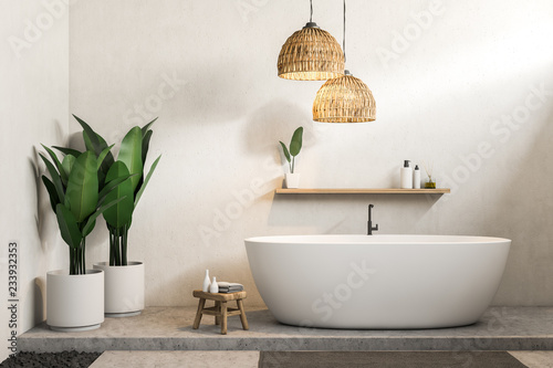 Fotografie, Obraz  White bathroom, white tub