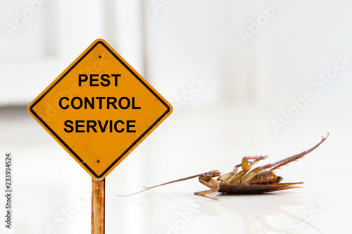 Dead cockroach on floor with caution sign pest control service