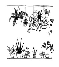 Set Of Potted House Plants, Ve...