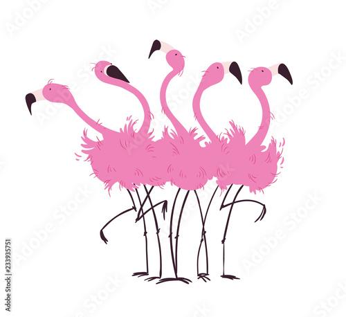 Fototapeta premium Stado flamingów ilustracji wektorowych