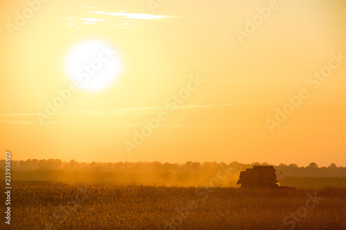 Garden Poster Brown combine working in field of harvested wheat at sunset