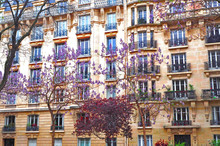 Paris. The Facade Of A Typical House With Trees, Wisteria In The Courtyard