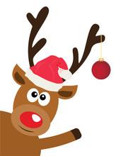 Vector Fun Reindeer