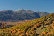 Peak Foliage, White Mountains,...