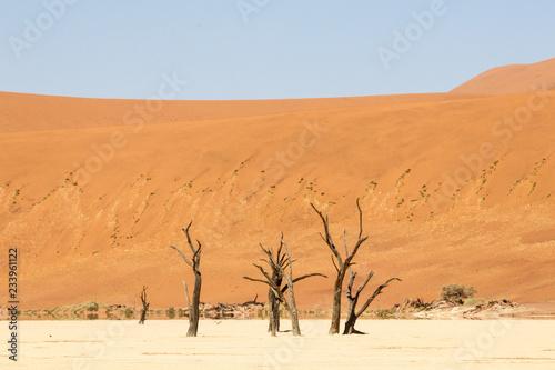 Fotografie, Obraz  Dünen am Sossusvlei, Namibia