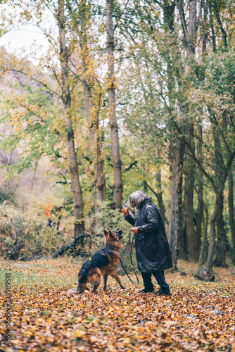 Acrylic Prints Horseback riding Long haired German shepherd dog plays with its owner.