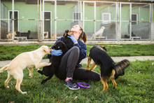 Young Woman In Dog Shelter Pla...