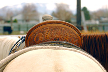 Saddle Tooling Detail Behind The Cantle