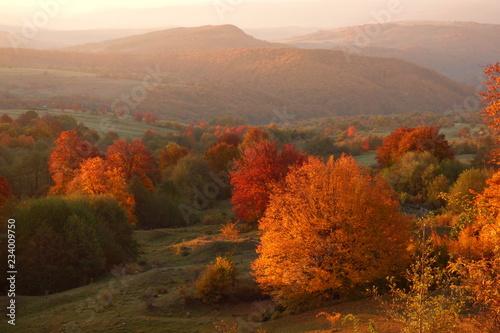 Aluminium Prints Autumn Autumn sunset landscape