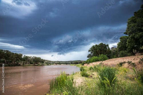 Foto op Canvas Olifant Olifant river scenery in stormy day in Kruger National park, South Africa