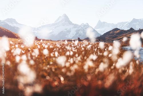 Montage in der Fensternische Dunkelbraun Picturesque view on Bachalpsee lake in Swiss Alps mountains. Snowy peaks of Wetterhorn, Mittelhorn and Rosenhorn on background. Grindelwald valley, Switzerland. Landscape photography