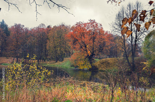Autumn landscape with small pond in the park.Gray clouds in dark overcast sky.Moscow region,Russia