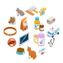 Veterinary Icons Set In Isomet...