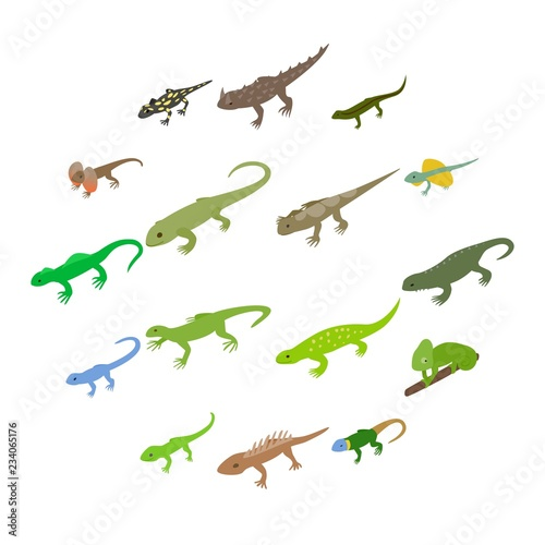 Photo Lizard icons set in isometric 3d style on a white background