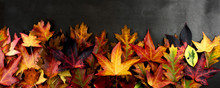 AUTUMN BACKGROUNDS, FRAME OR B...