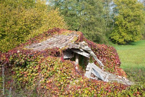 Vászonkép  cabane en ruine