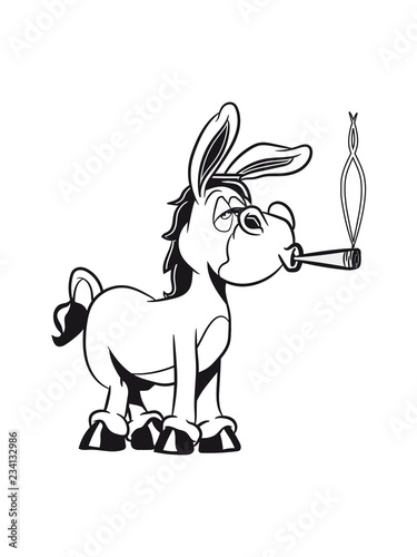 Tablou Canvas esel witzig kiffen joint cool tier muli lustig natur vierbeiner muli grautier ei