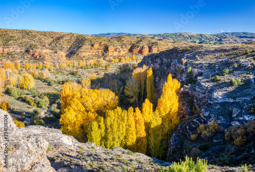 Looking down into a canyon area in Teruel Spain with a rocky landscape and the golden trees of autumn inside the canyon and a clear blue sky above