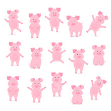 A Set Of Cute Pig Characters In Different Poses, Sitting, Standing, Walking, Hand Up And Down. Funny Animal. The Symbol Of The Chinese New Year