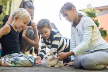 Young Mother With Three Kids Petting Their Pet Rabbit