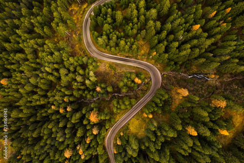 Photo  Curvy road in atumn forest.