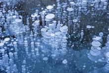 Bubbles Frozen In Lake Ice