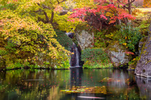A Waterfall Inside Beautiful Autumn Trees