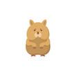 Hamster flat icon.