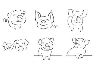 drawing of cute pig  illustration simple concept zodiac of pig.