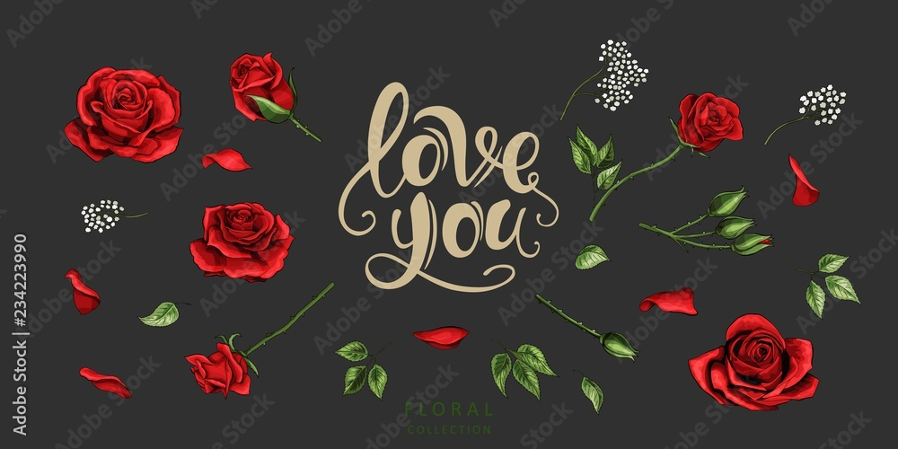 Fototapety, obrazy: Red roses hand drawn illustration elements colored set