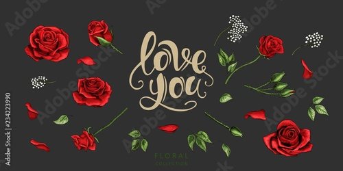Red roses hand drawn illustration elements colored set Canvas Print