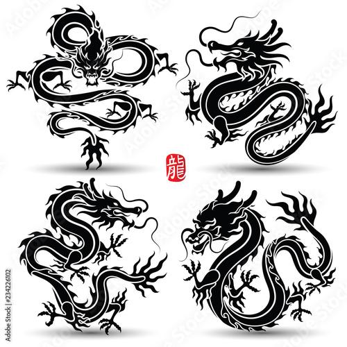 chinese Dragon Tablou Canvas