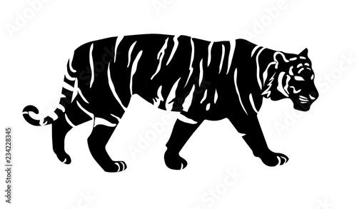 Photo tiger silhouette 2